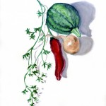 Still life with courgette, onion, pepper and coriander
